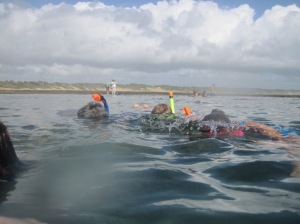 Snorkelling in the warm ocean at Sodwana Bay
