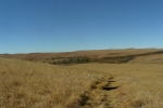Path through the Highmoor grasslands