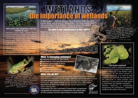 Mkhuze-wetlands