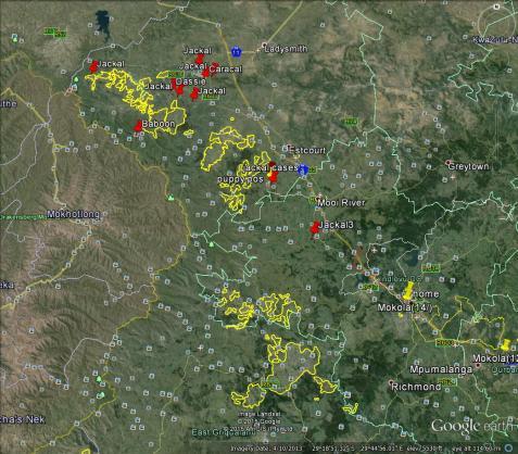 Rabies map